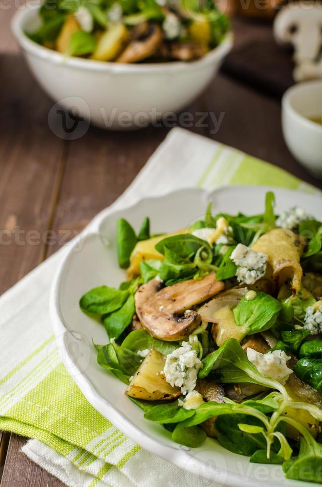 Fresh salad with vegetable and blue cheese photo