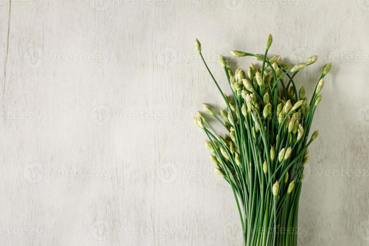 Garlic chives photo