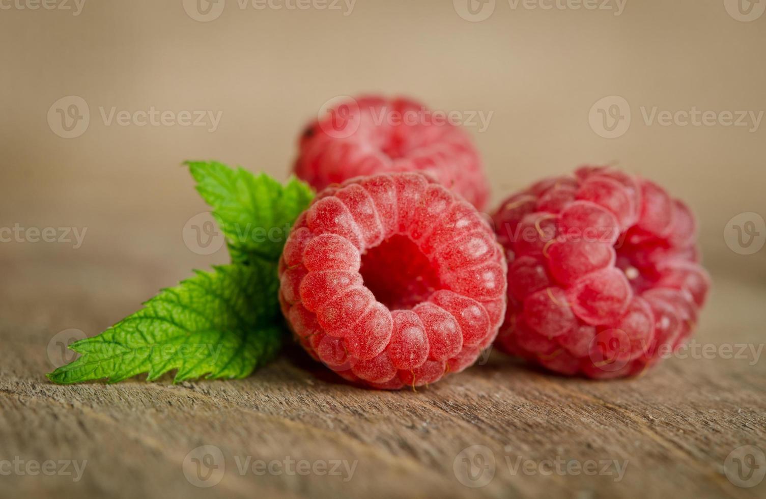 Three sweet ripe raspberries photo