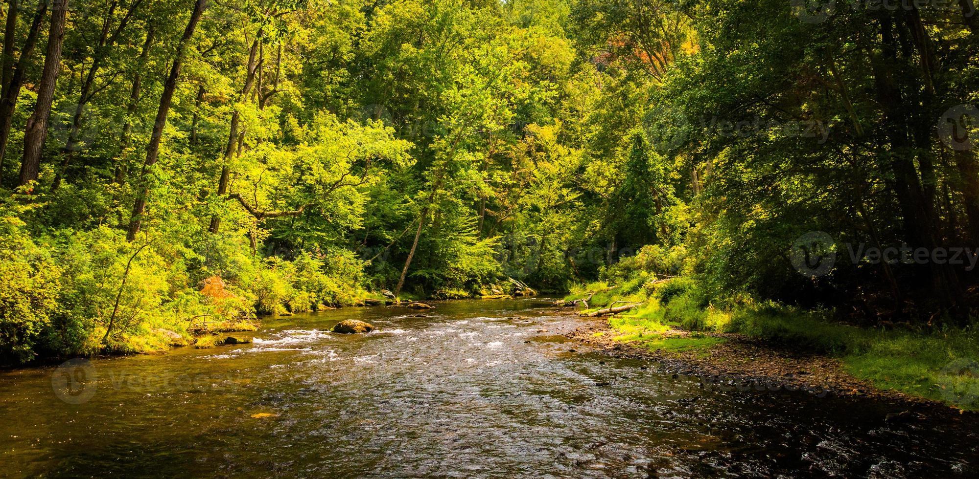 hermosa escena del arroyo a lo largo de la pólvora cae en el condado de baltimore foto