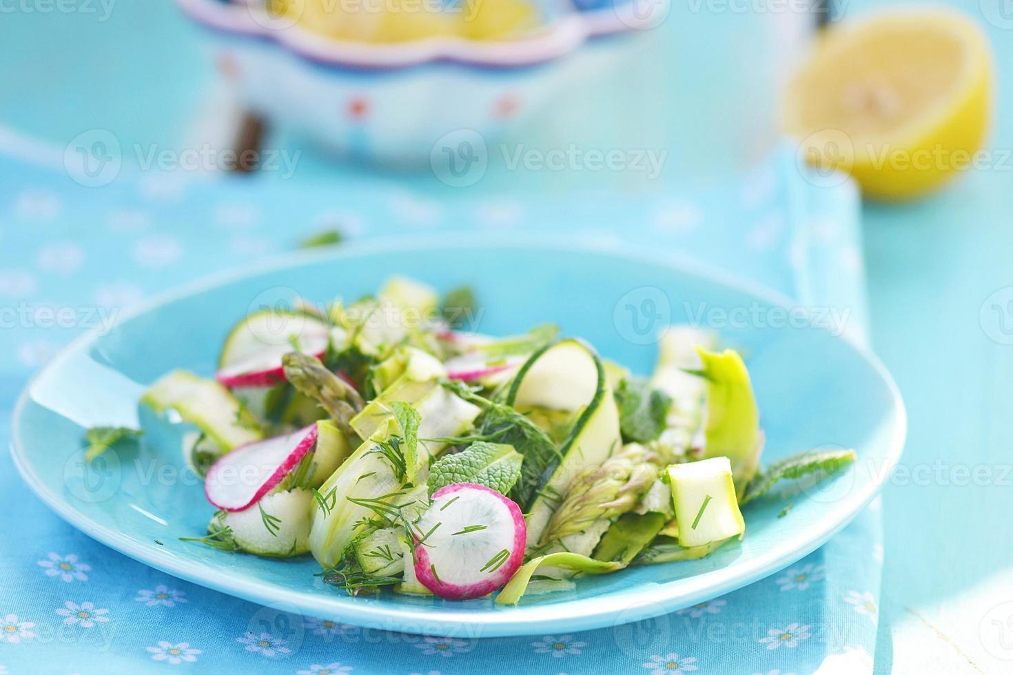 spring vegetables salad photo