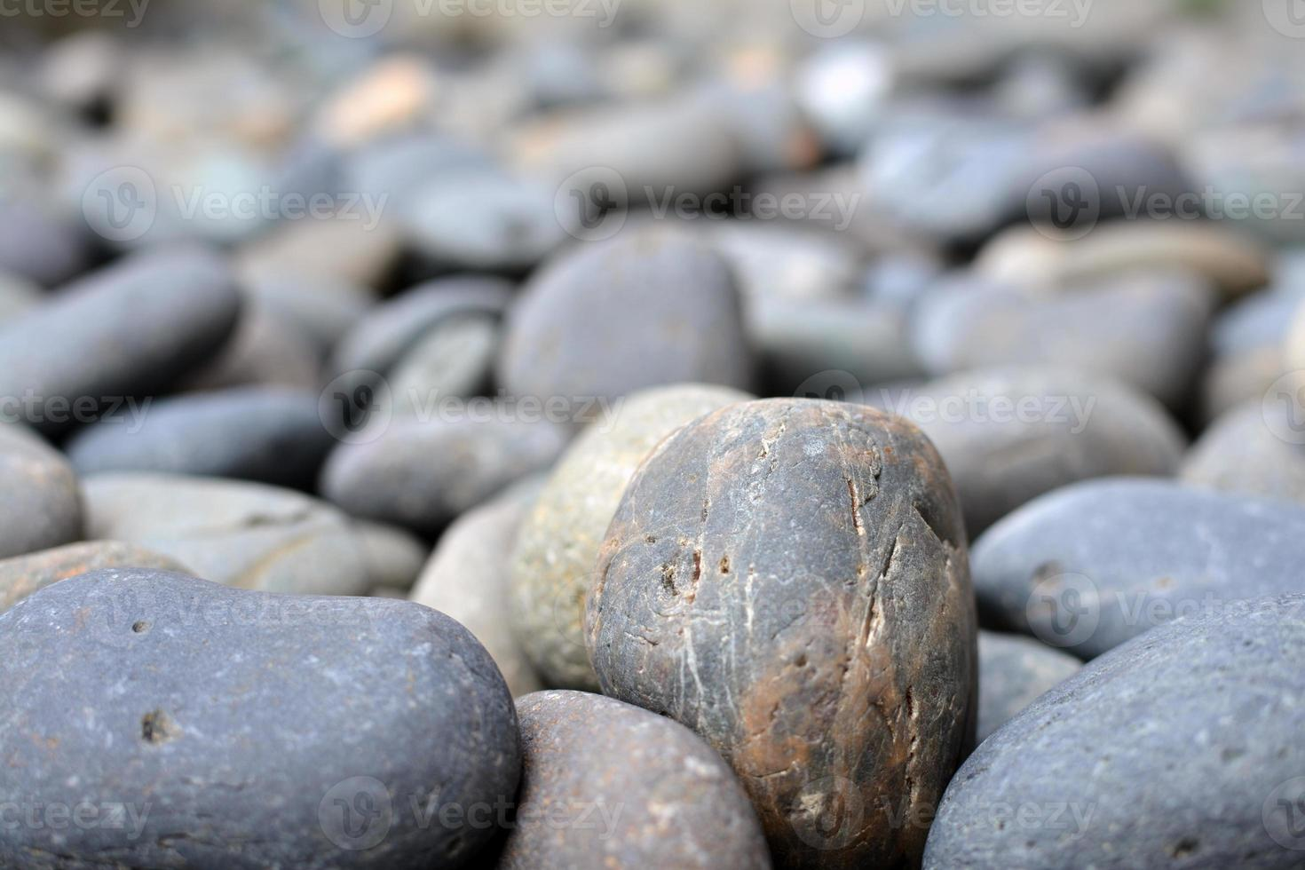 jardín de piedras foto