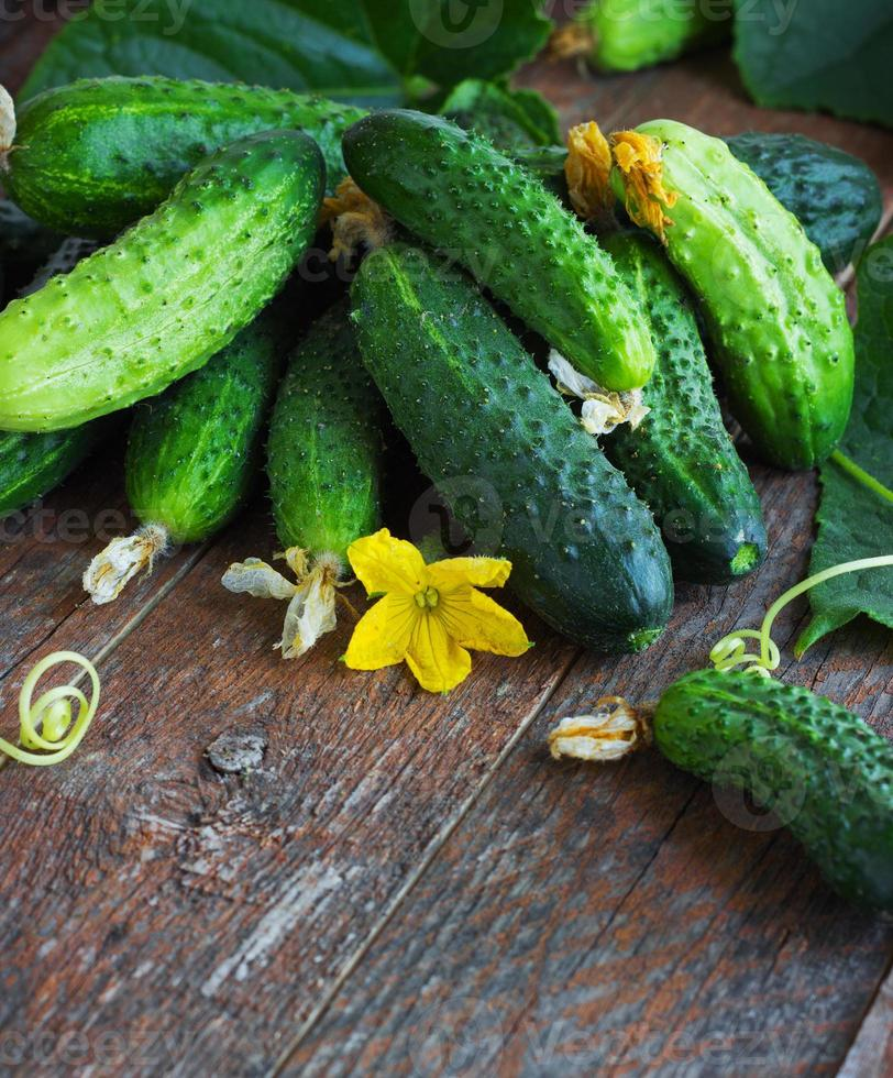 Harvest cucumbers  on the wooden background photo
