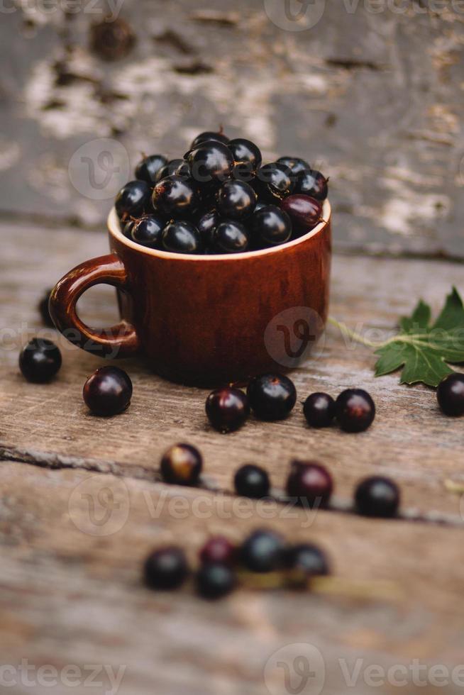 Fresh Blueberry photo