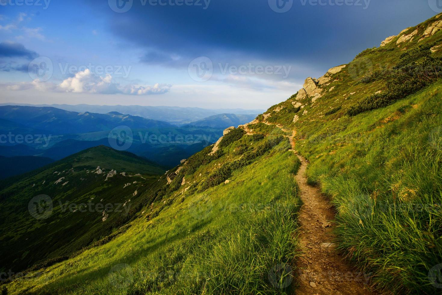 montaña en verano foto