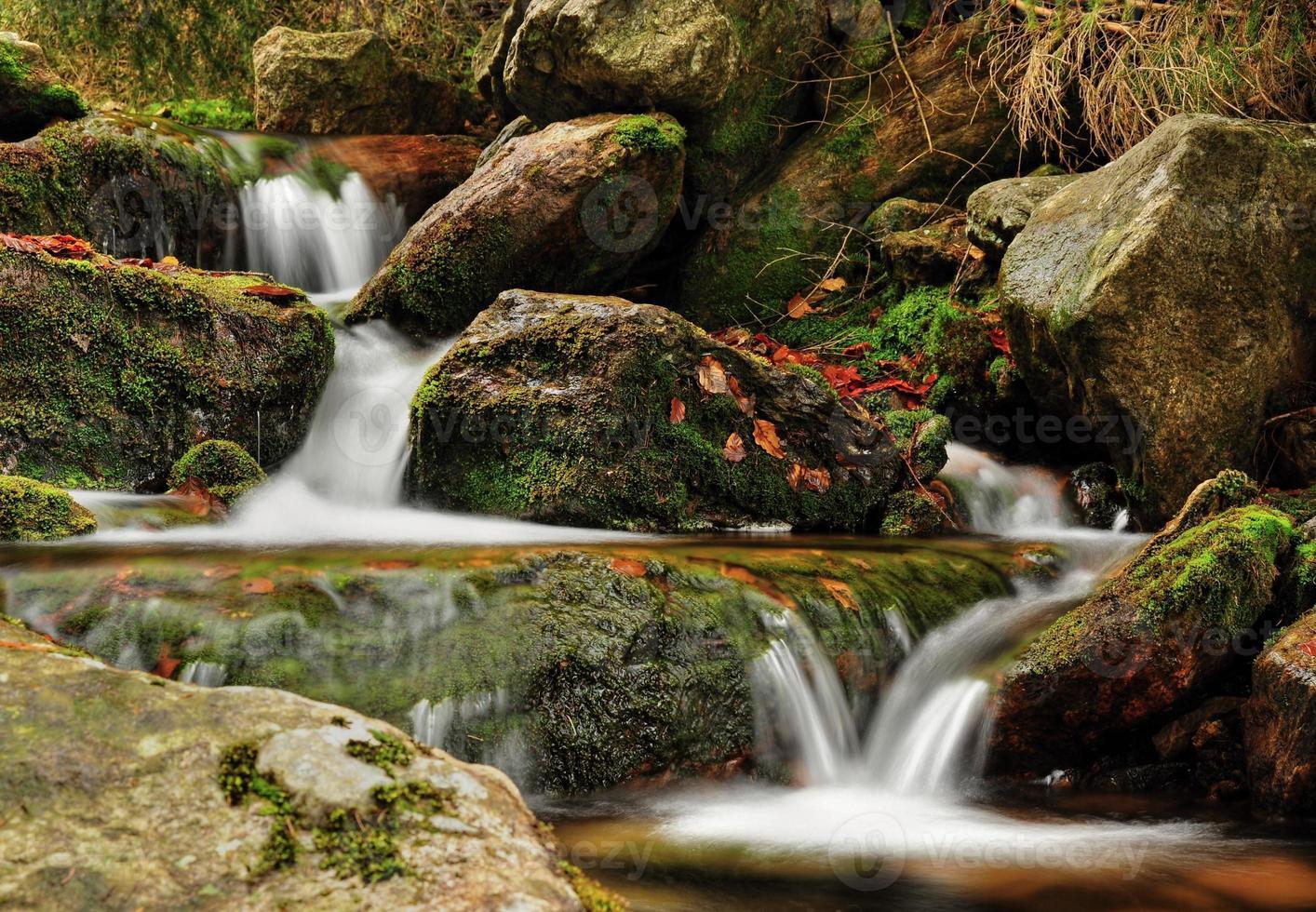 Spring creek photo