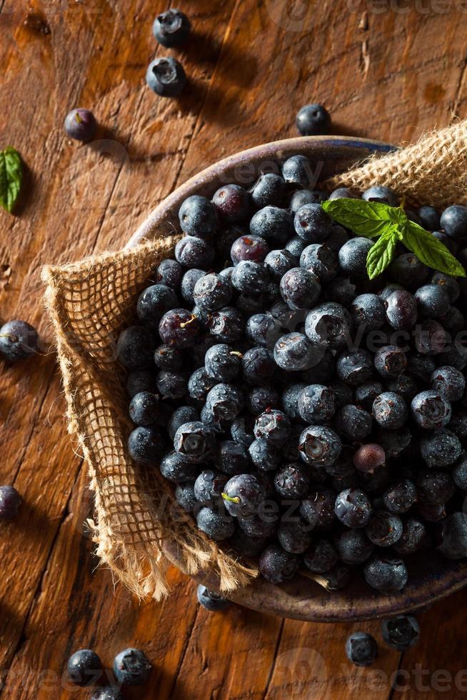 Fresh Raw Organic Blueberries photo