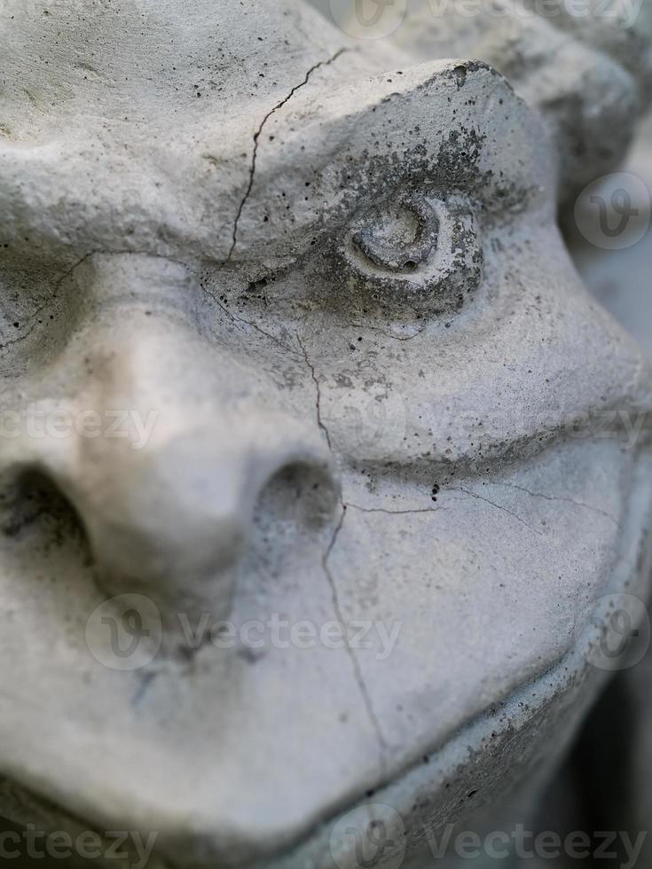 Gargoyle Partial Portrait photo