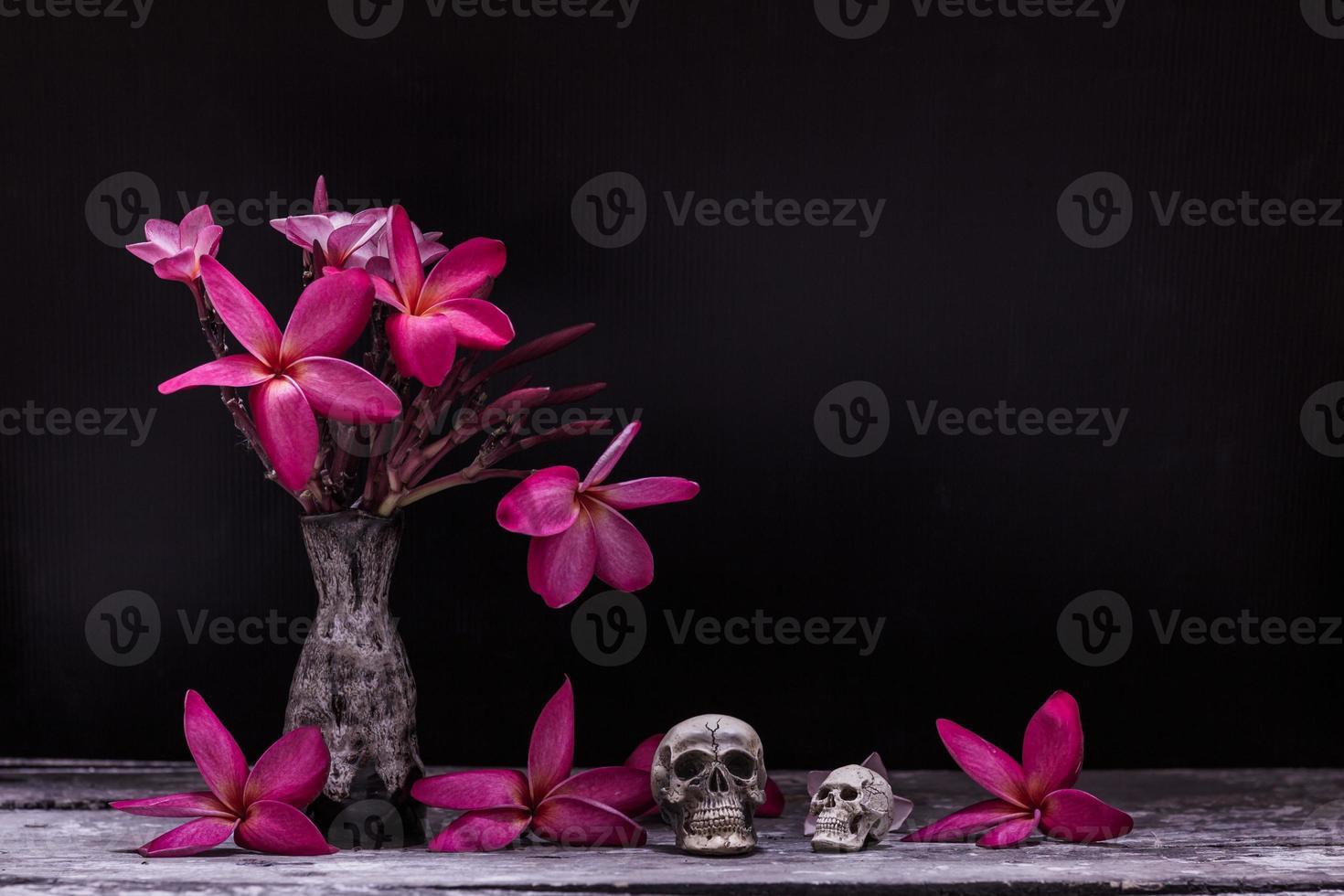 flower skull on wood photo