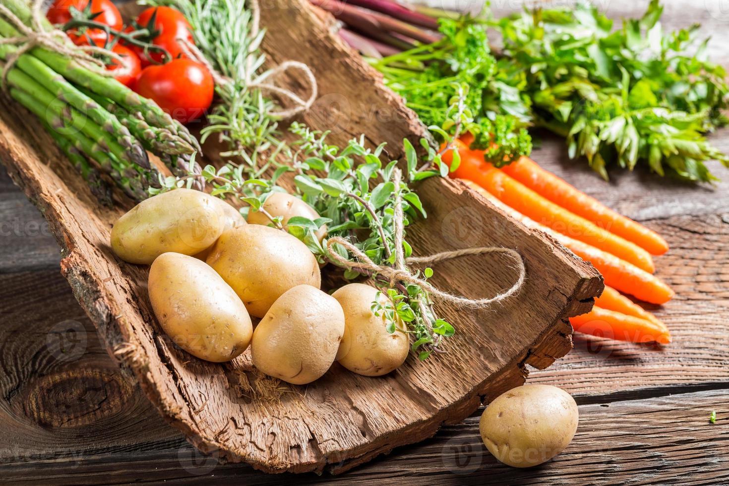 varias verduras frescas en la corteza foto