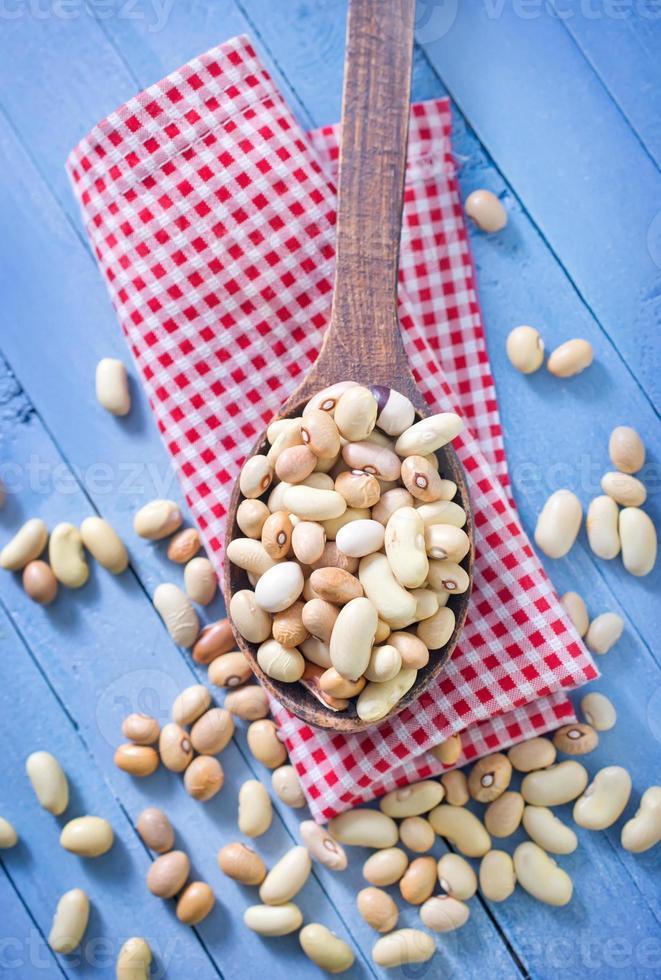 raw beans photo
