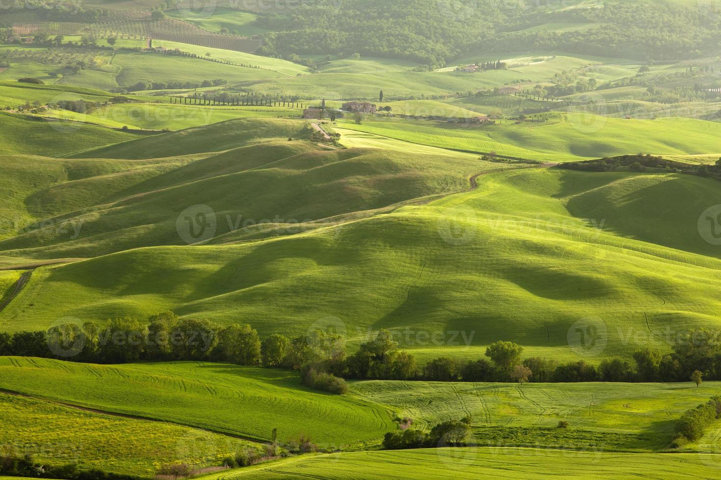paisaje de toscana foto