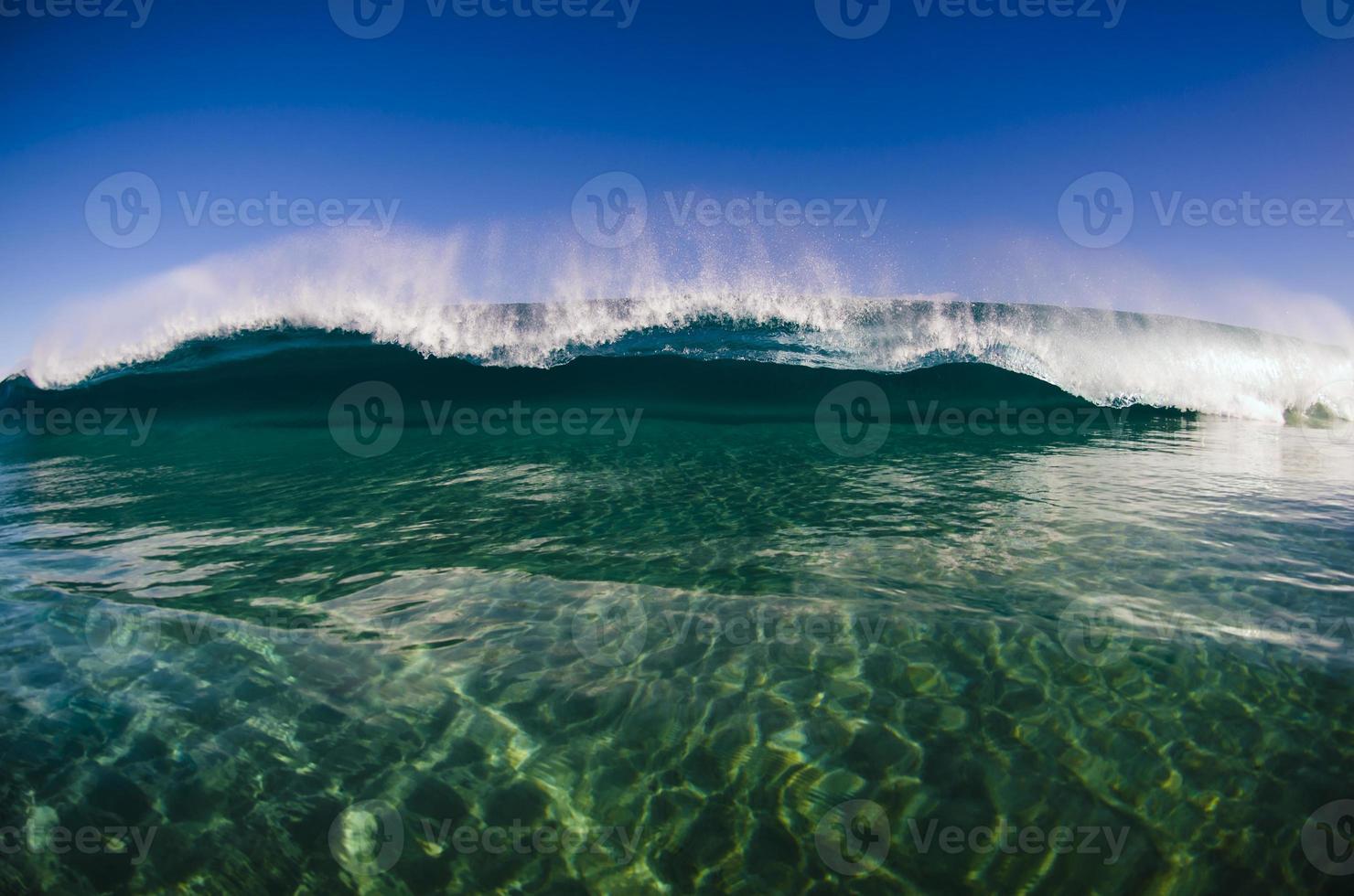 poco profundo y verde foto