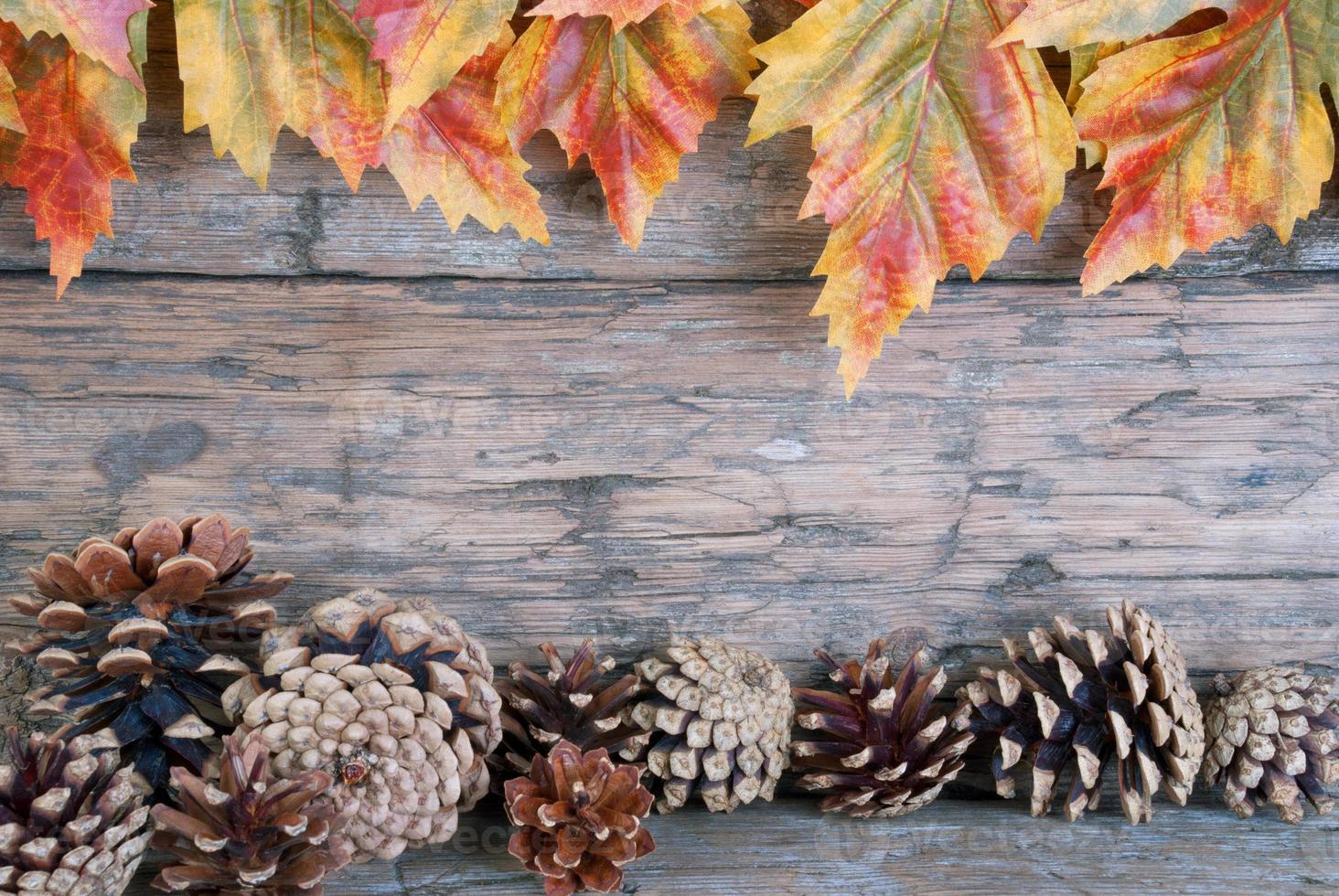 fondo de otoño foto