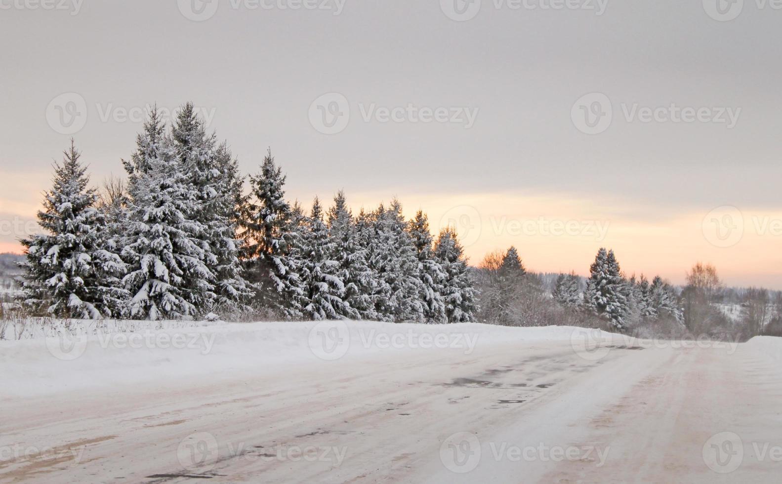 camino de invierno foto