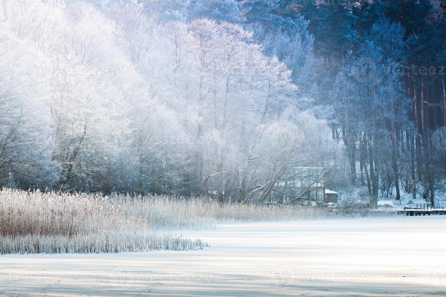 lago de inverno foto