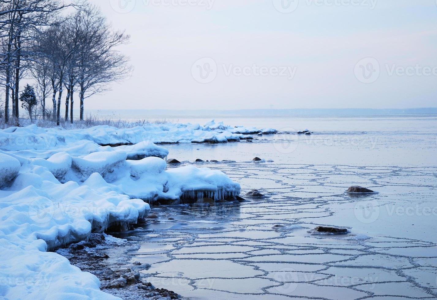 Winter coast photo
