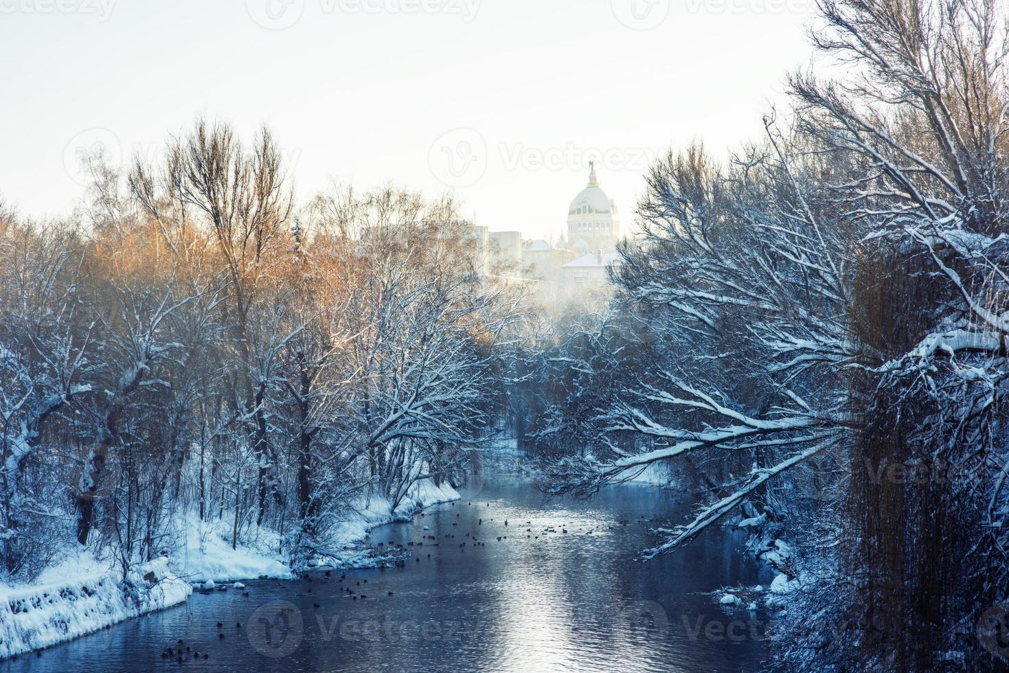 parque de invierno foto