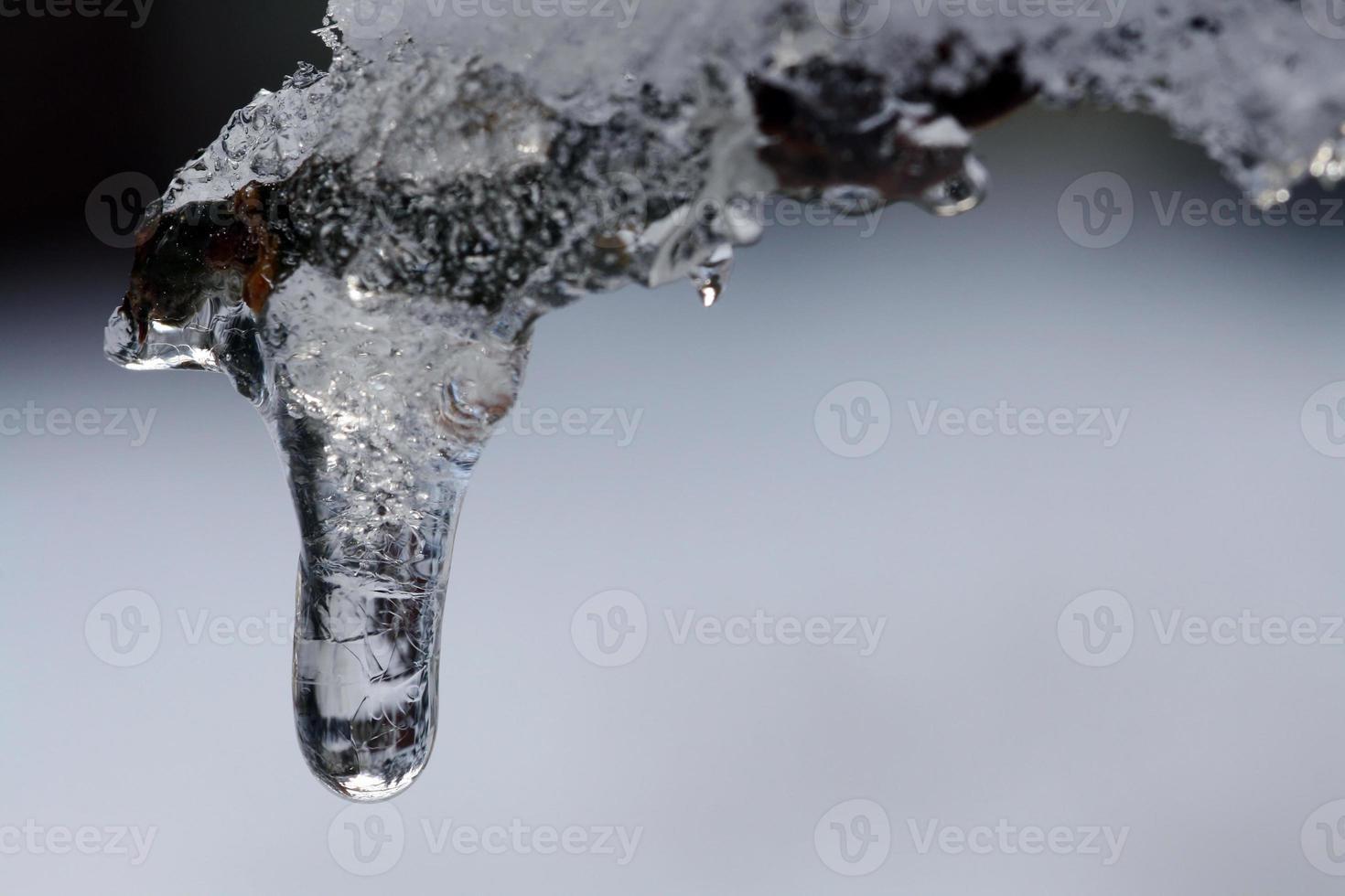 carámbano en invierno foto