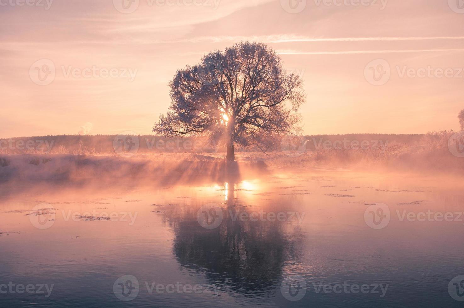 colorida mañana de invierno foto