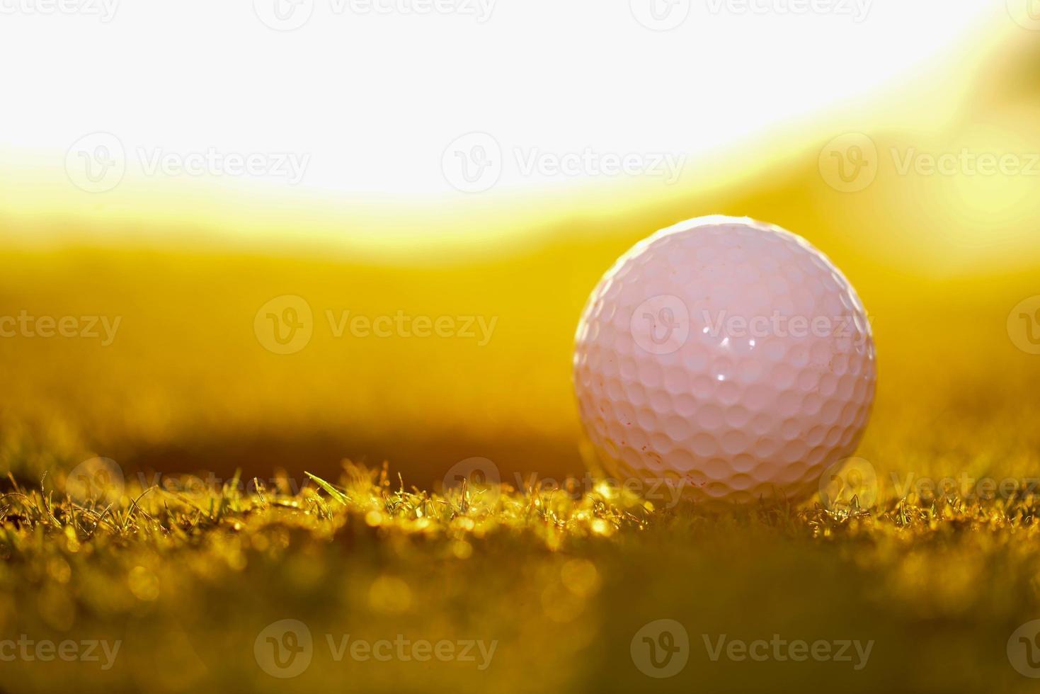paisagem do campo de golfe foto