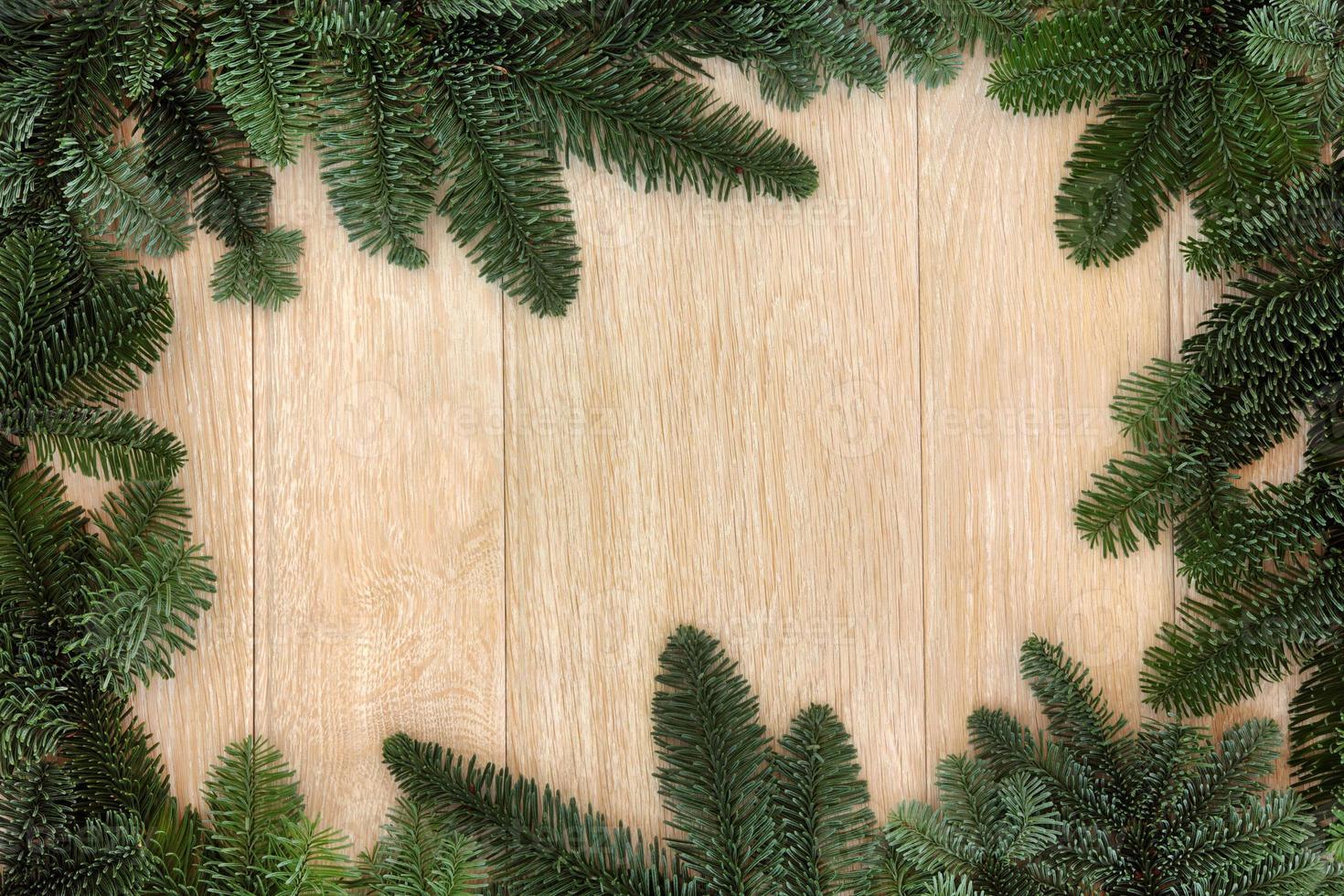 frontera verde de invierno foto