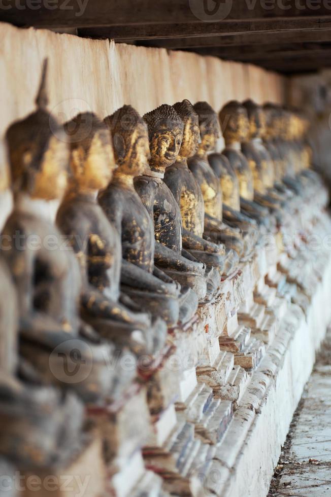 linha da estátua de Budas. foto