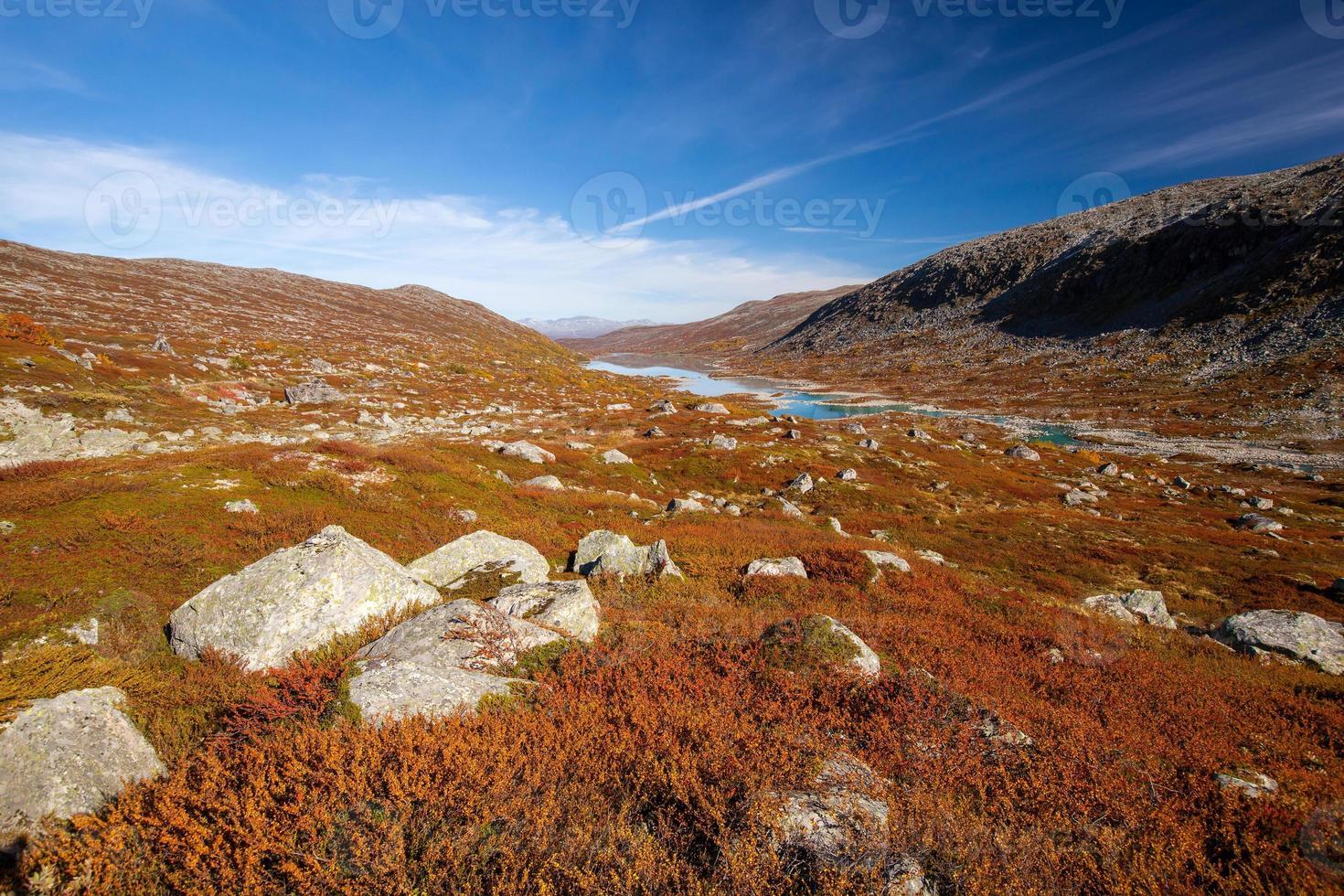 soleado otoño paisaje noruega gamle strynefjellsvegen foto
