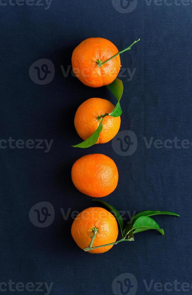 Four ripe tangerines in a row photo