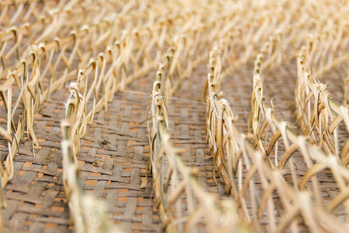 fila de tejido de bambú, una cesta de capullos de gusano foto