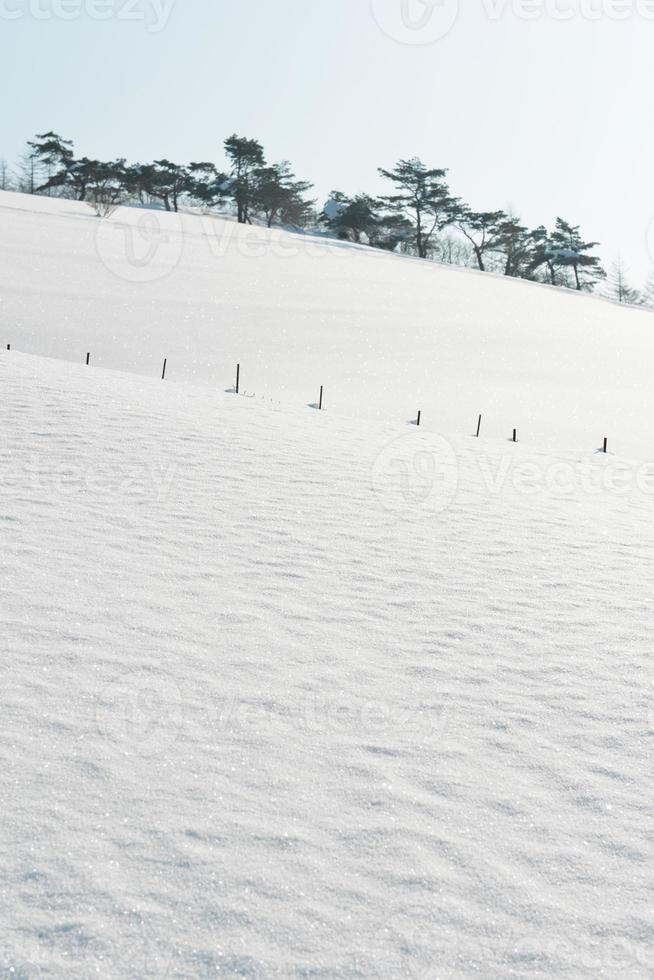 Winter snow hill photo