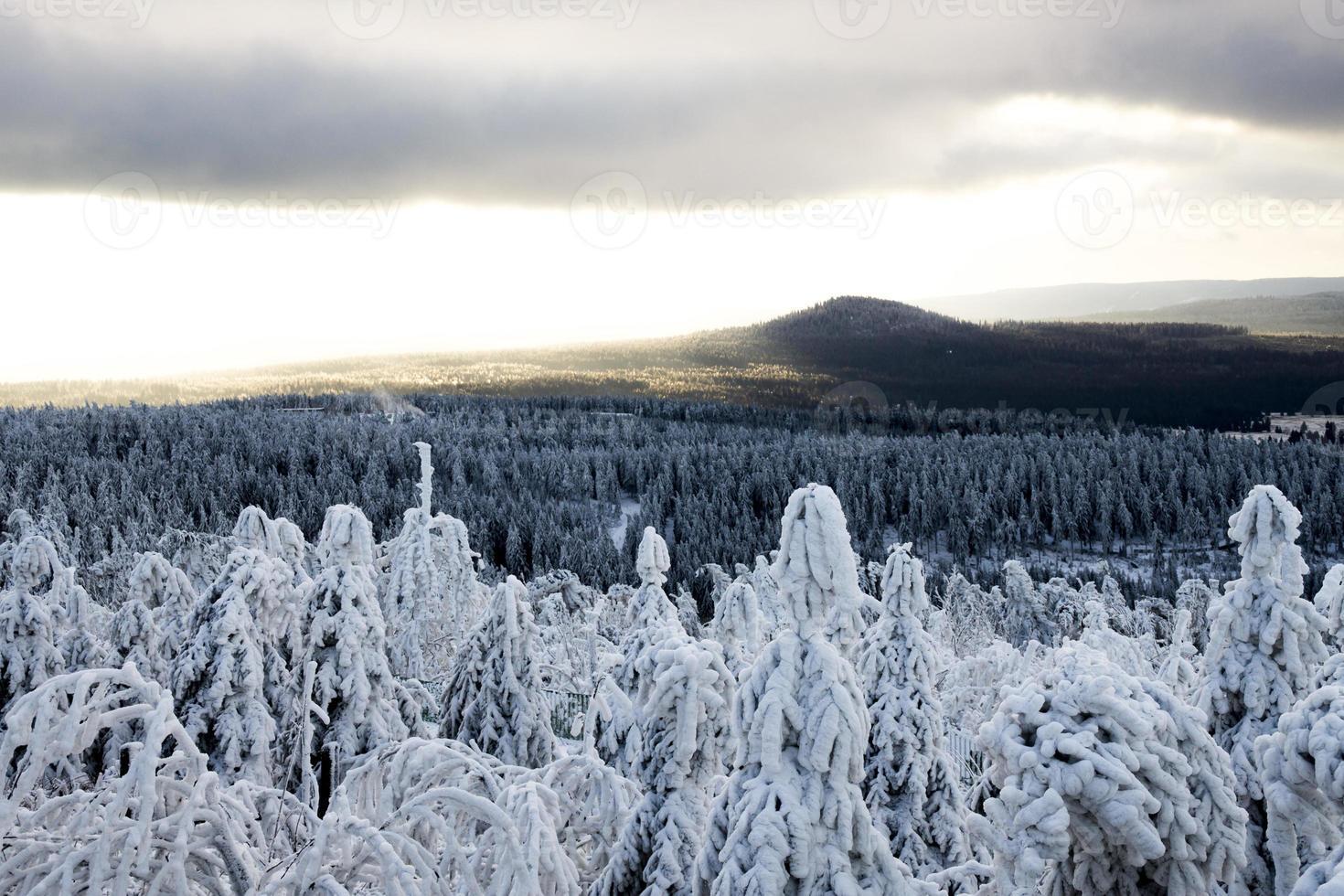 inicio del invierno foto