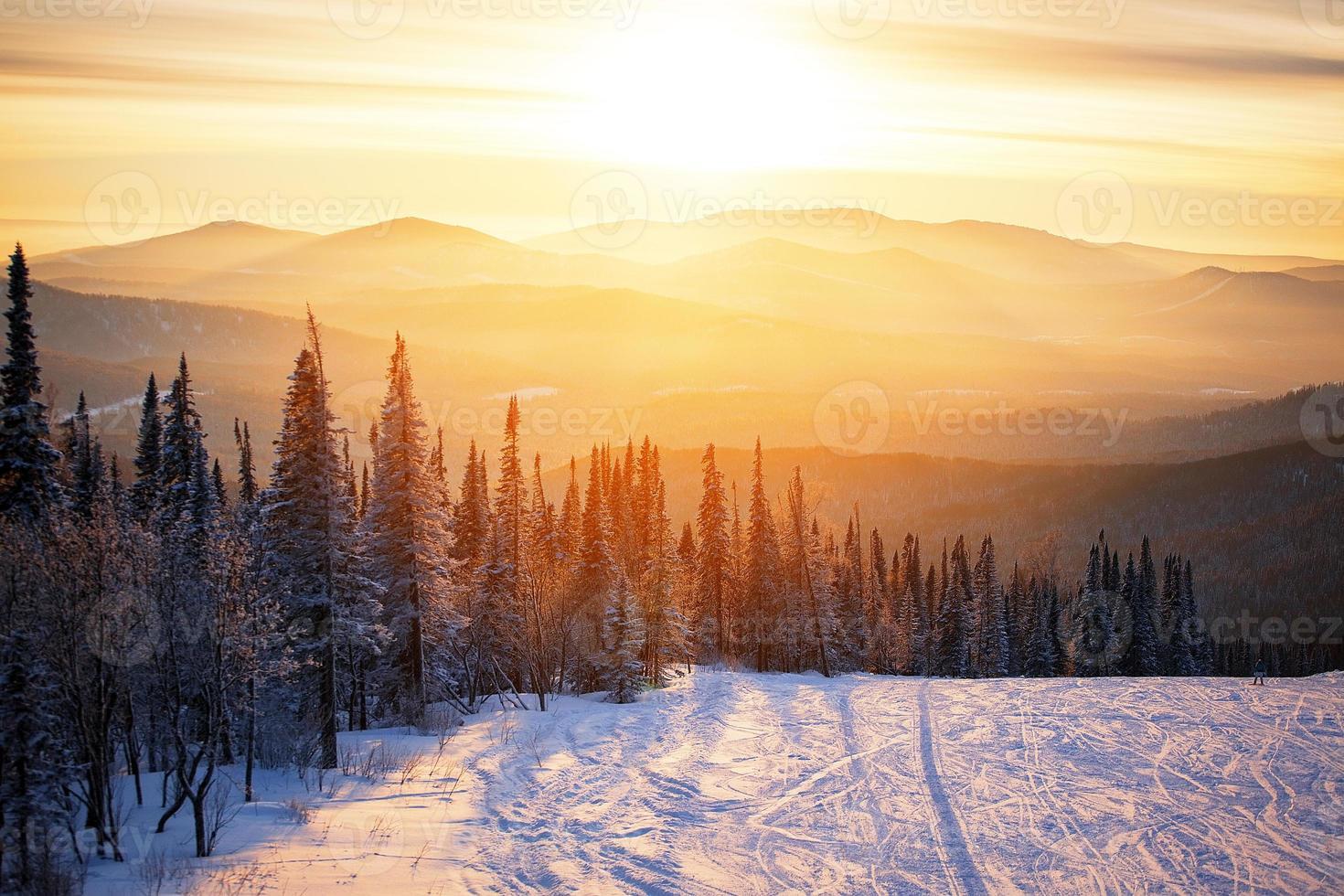 puesta de sol del bosque de invierno foto