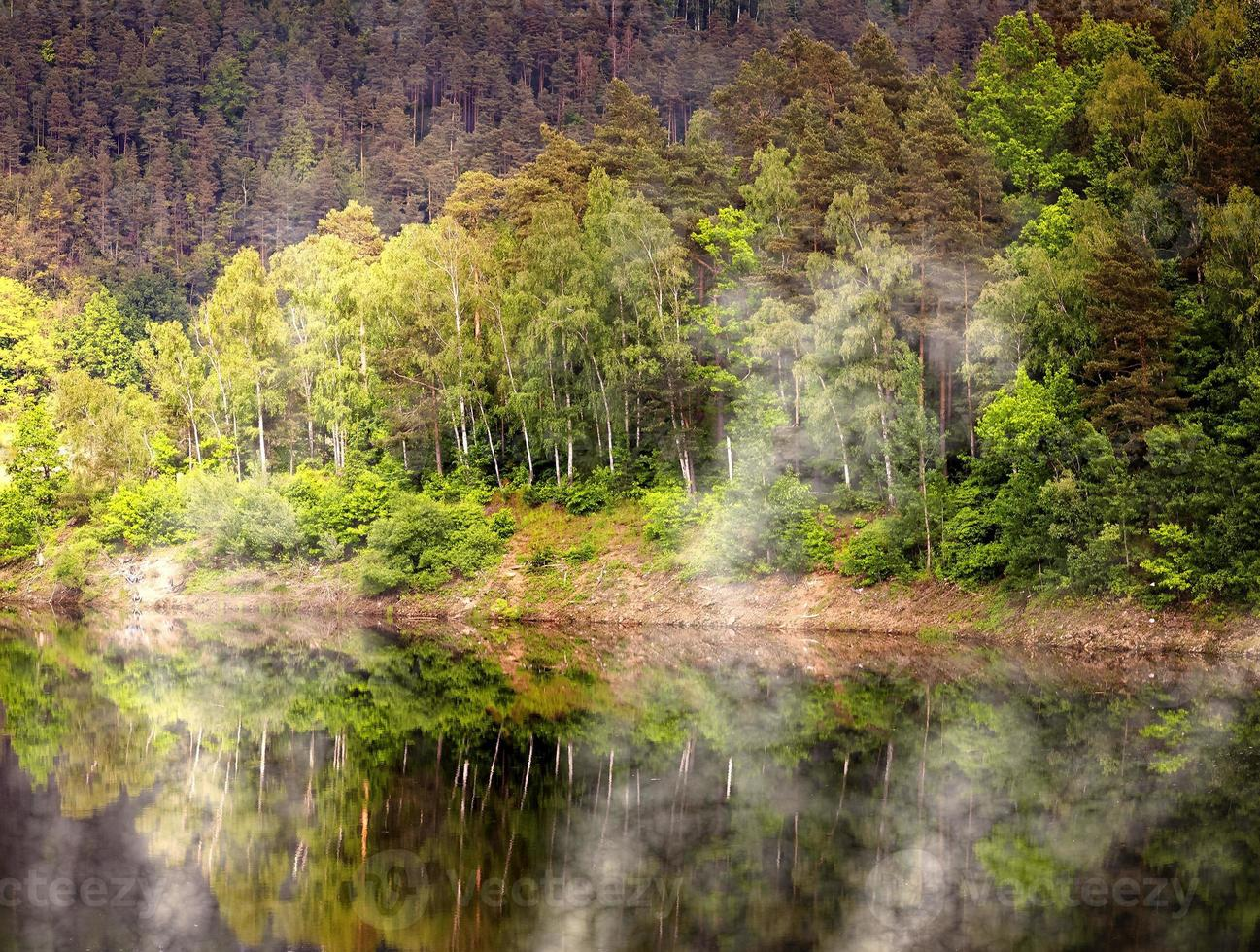 lago del pantano foto