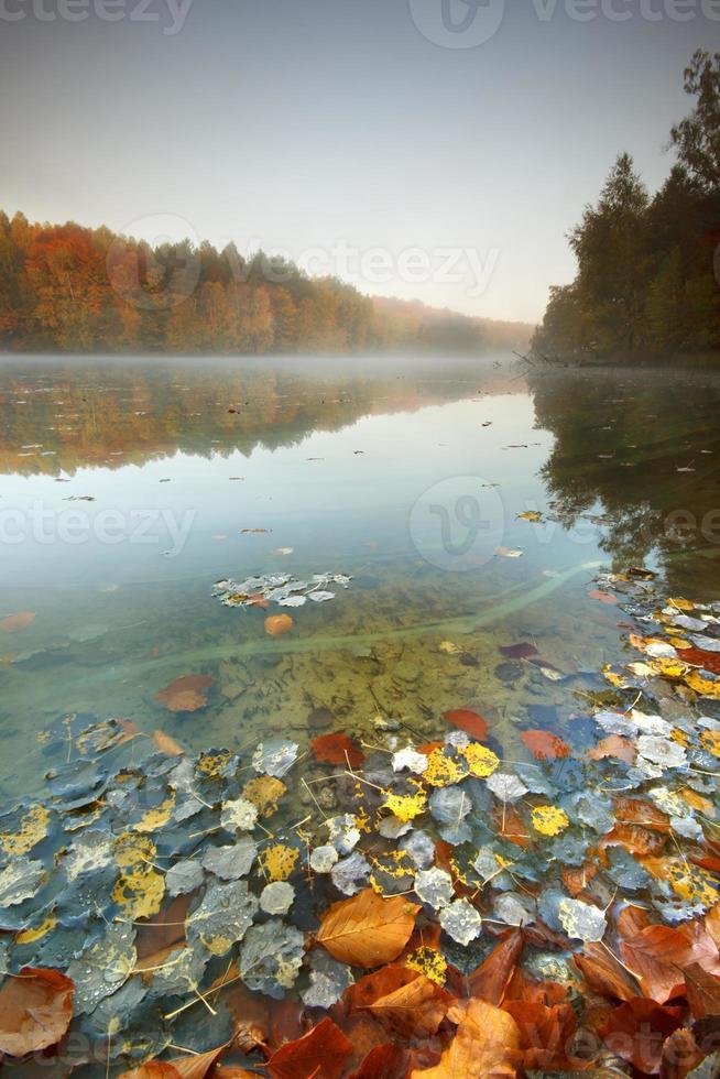 Lago de otoño. foto