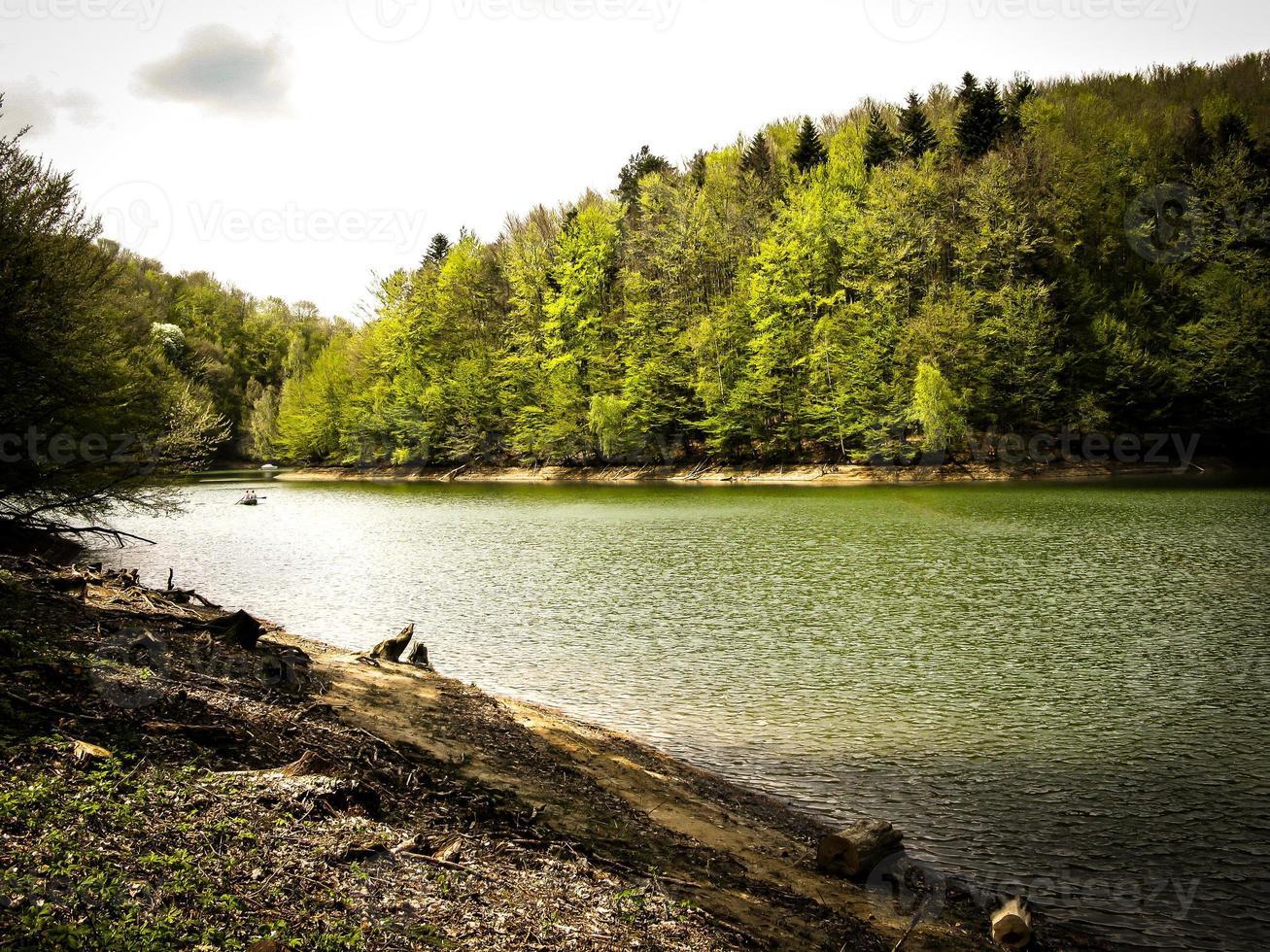 lago del bosque foto