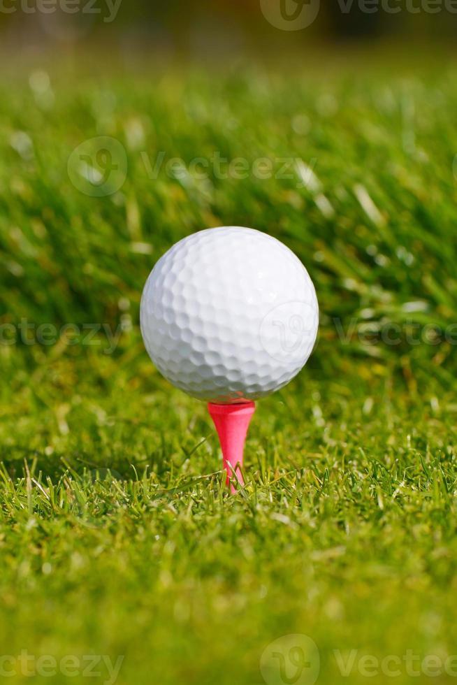 pelota de golf en tee foto
