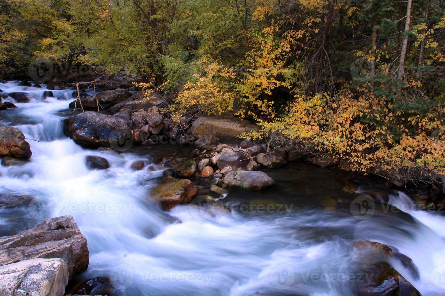 corriente de agua corriente, montañas de utah caen color río rápido foto