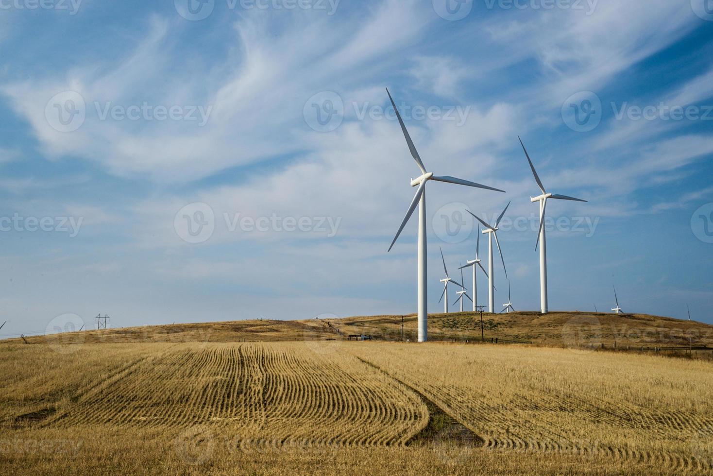 Turbines in wind farm photo