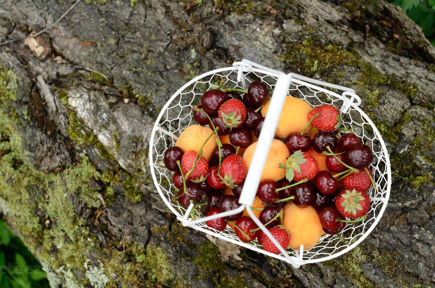 Picnic with mixed berries and fruits photo