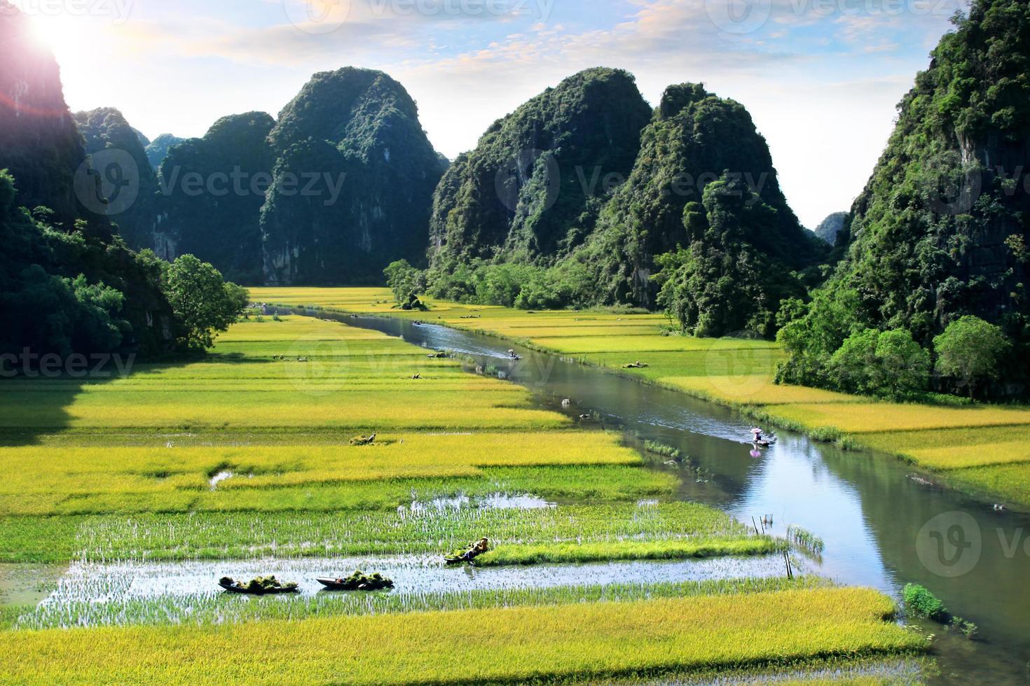 campo de arroz y río en ninhbinh, vietnam foto