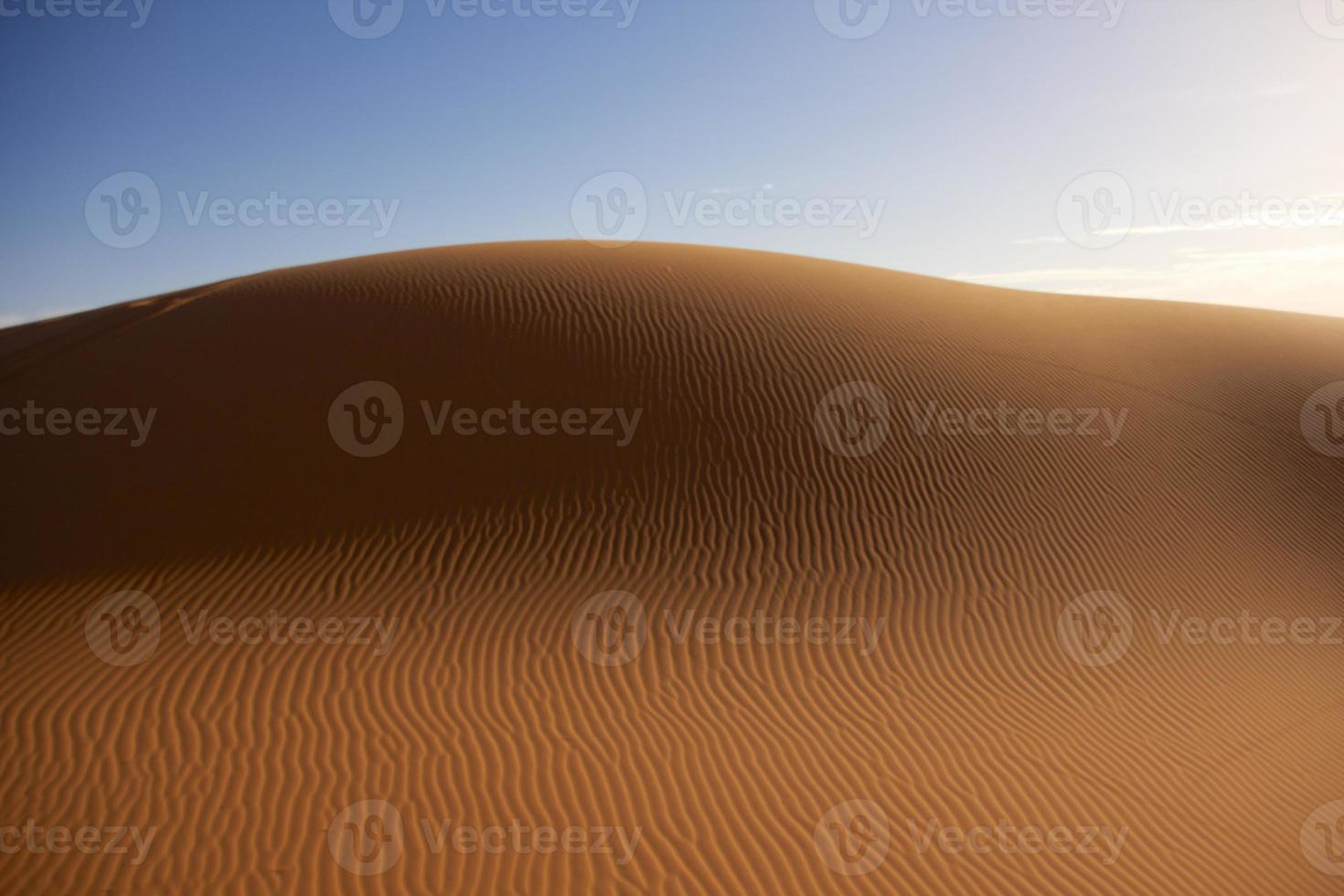 Dune in desert photo