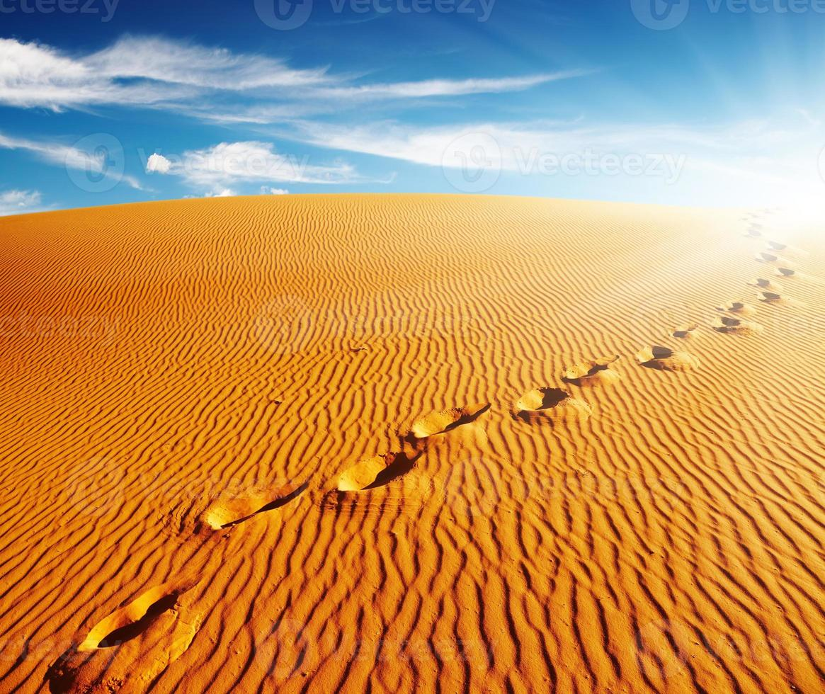 Landscape with footprints on a sand dune on a sunny day photo