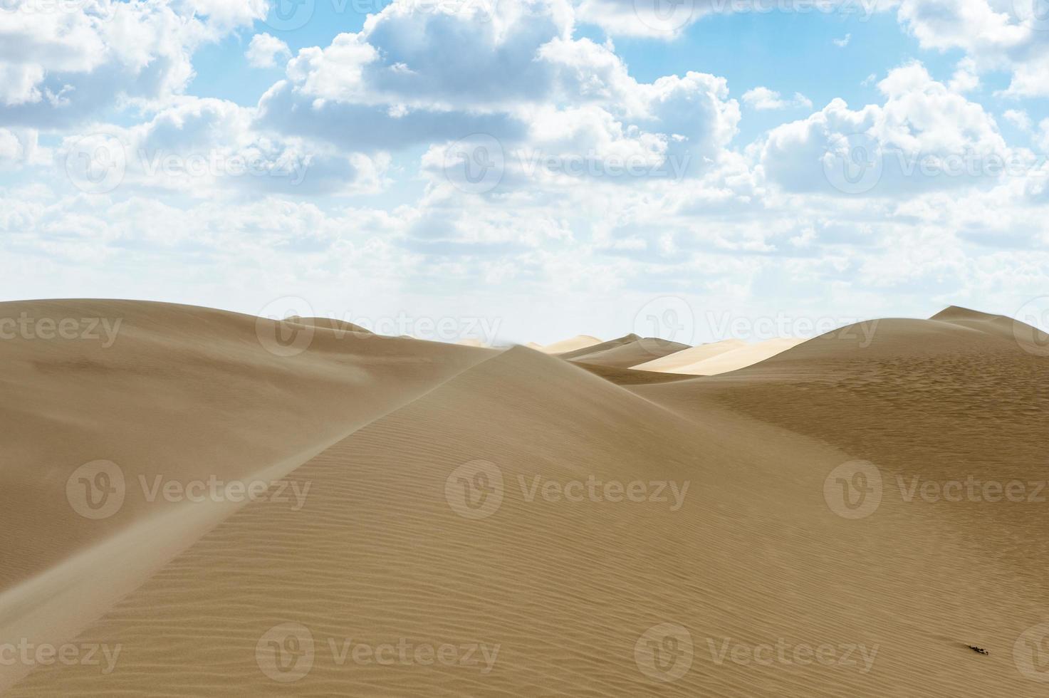 Desert in Egypt photo