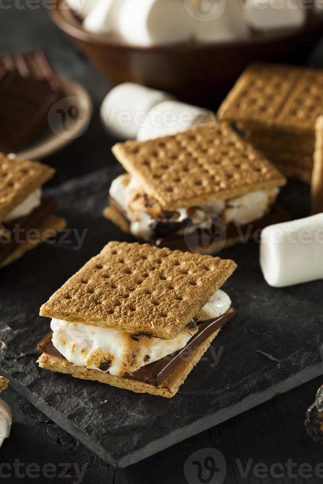 s'mores con malvaviscos, chocolate y galletas graham foto