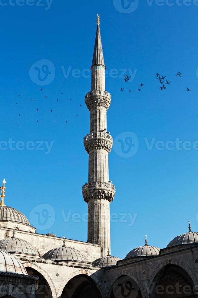 minaret of blue mosque photo