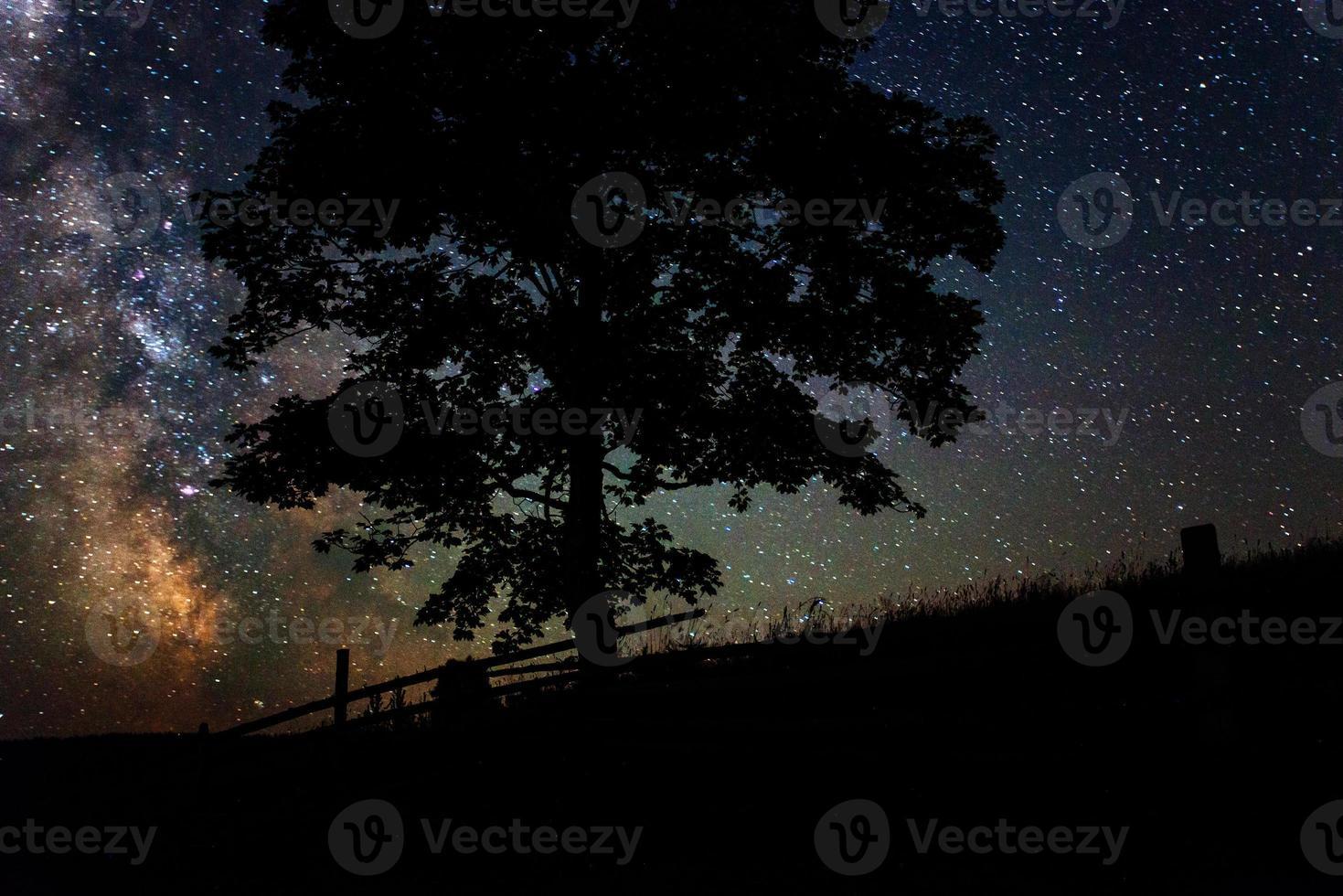 cielo estrellado foto