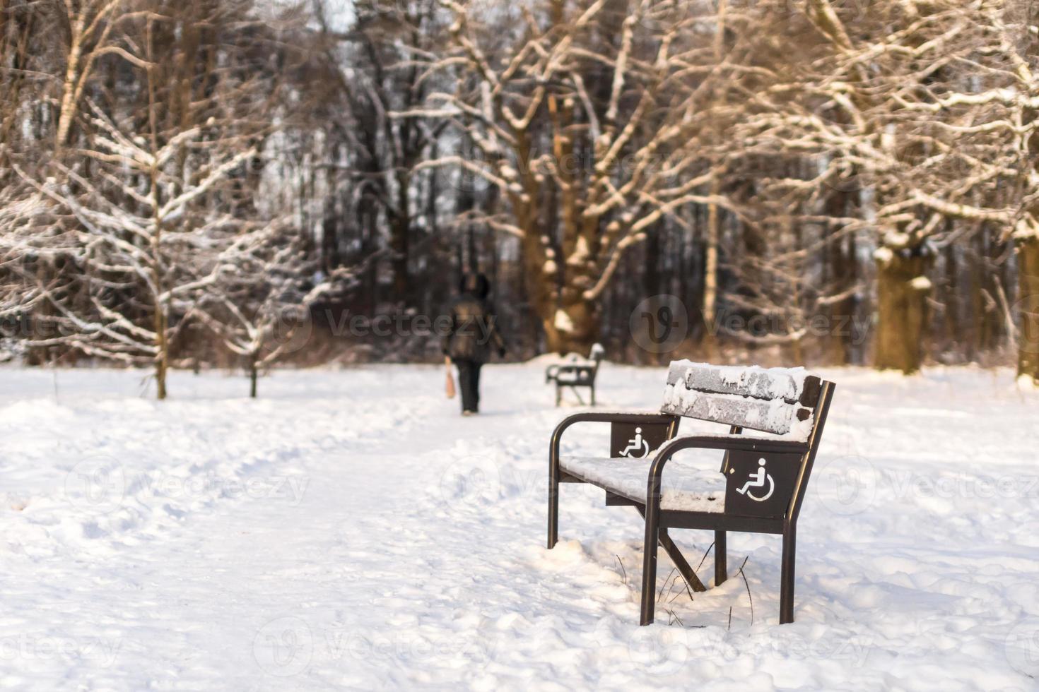 Pasarela con bancos en el parque de invierno. foto