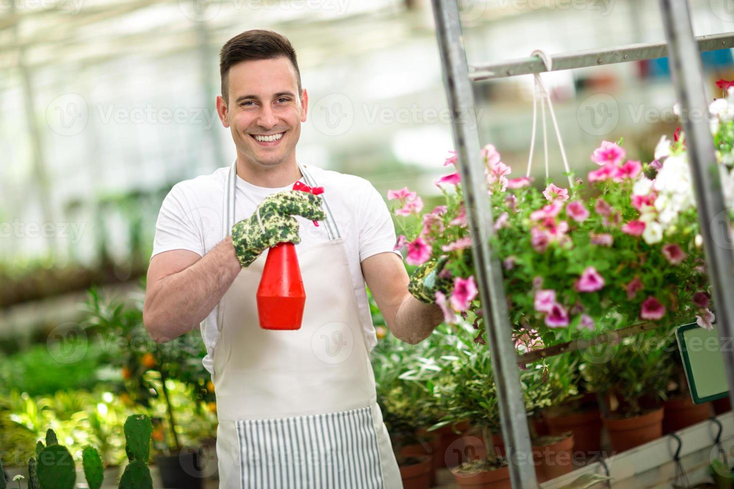 happy florest watering flower in glasshouse photo