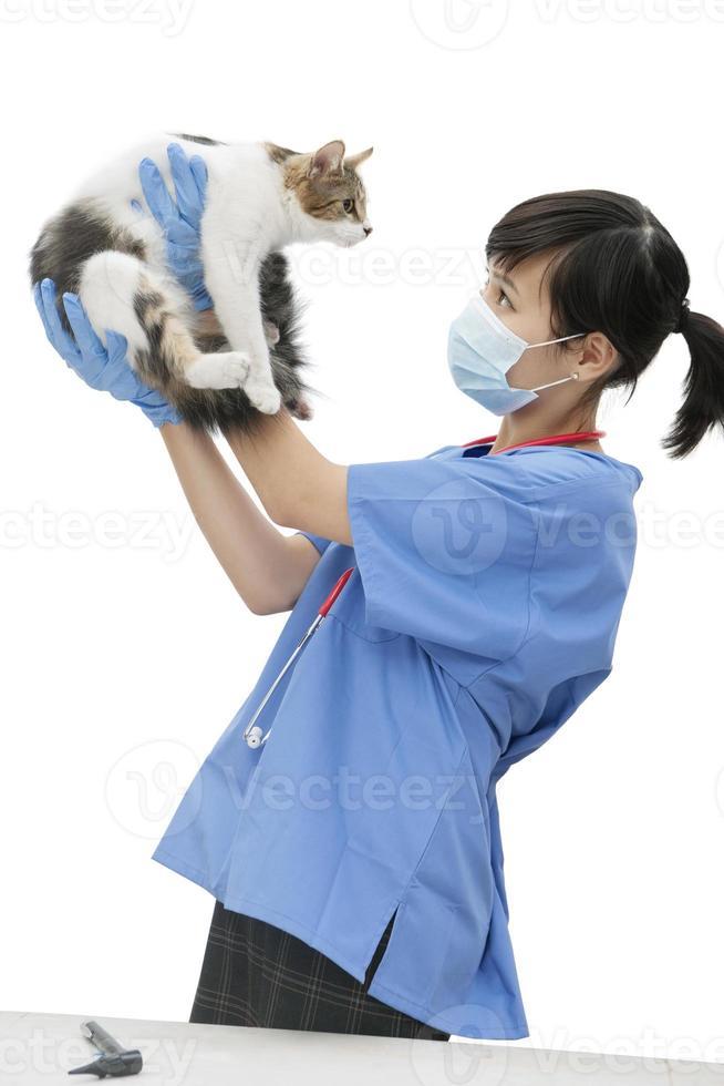 Female Veterinarian at Work photo